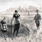 Охота на полевых птиц